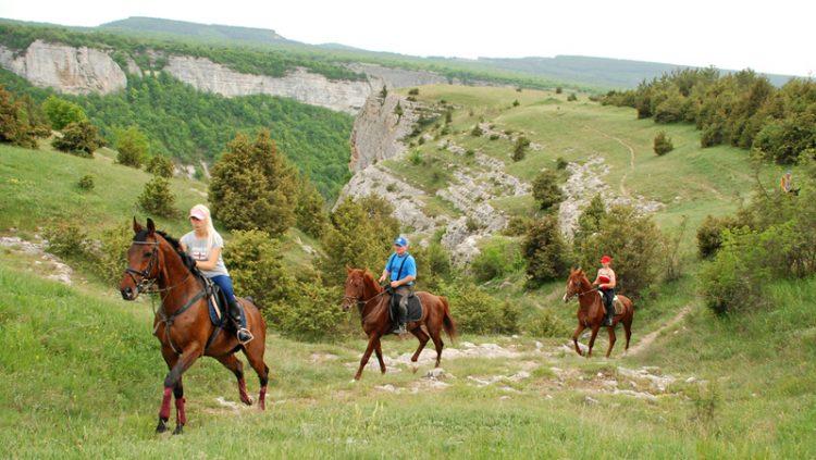 Маршрут конного спорта