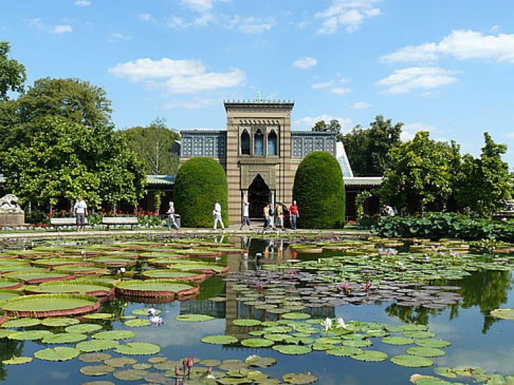 Ботанический сад Щтуттгарт