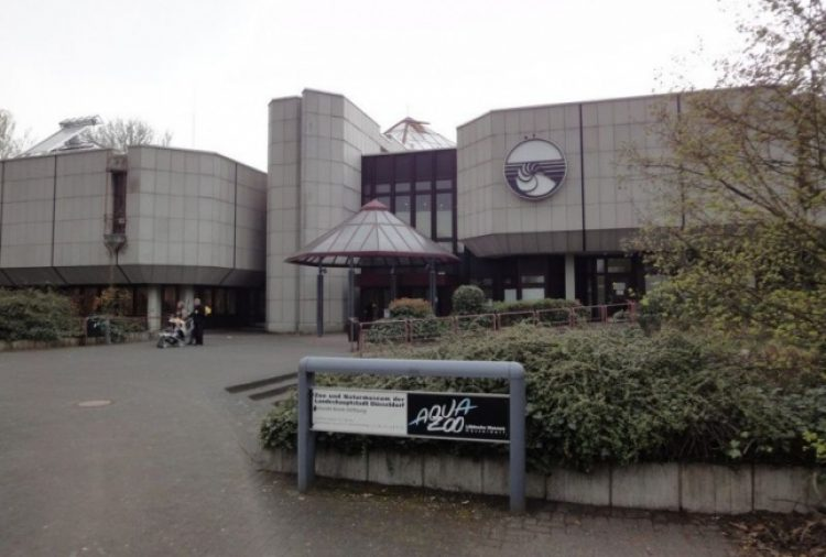 Дюссельдорф Водный зоопарк